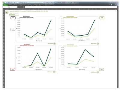 Sage 100 ERP Profitability Dashboard