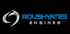 RYE-logo-Web